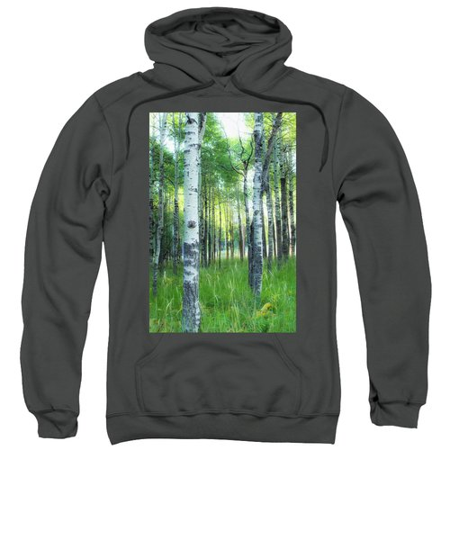 Tahoe Birch Sweatshirt
