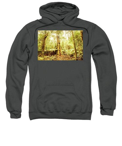 Tahune Forest Reserve Sweatshirt