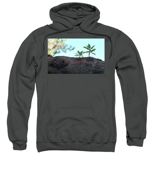 Taking A Walk Sweatshirt