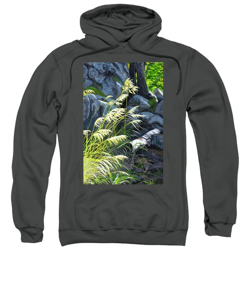 Tall Grass In A Breeze Sweatshirt