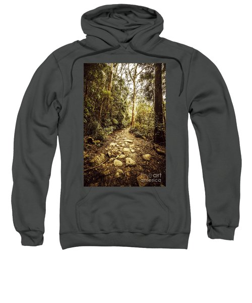 Temperate Mountain Trail Sweatshirt