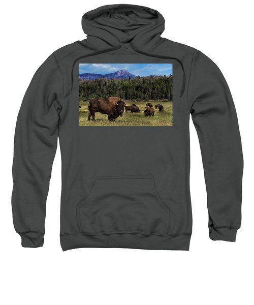 Tending The Herd Sweatshirt