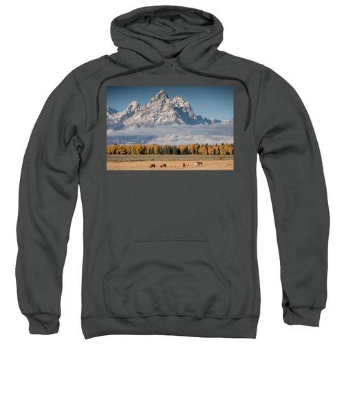 Teton Horses Sweatshirt