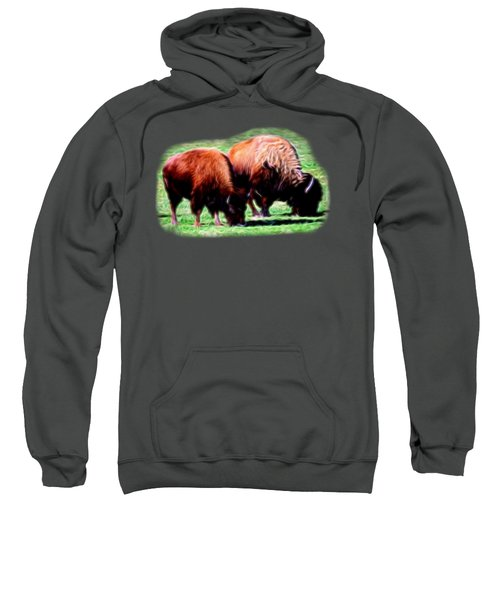 Texas Bison Sweatshirt by Linda Phelps