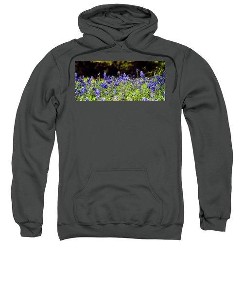 Texas Bluebonnets IIi Sweatshirt
