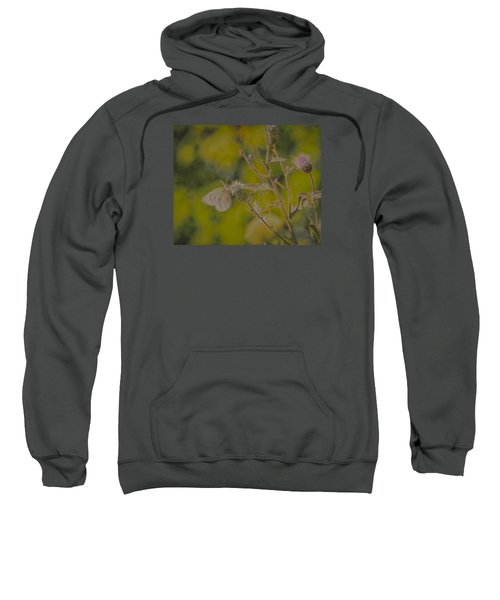 Textured Butterfly 1   Sweatshirt