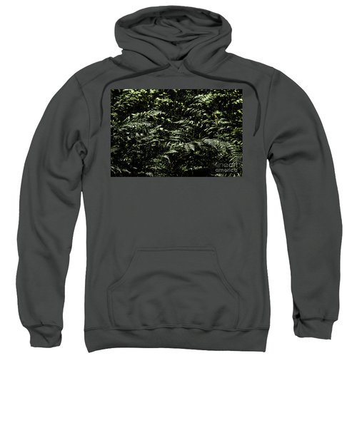 Textures Of A Rainforest Sweatshirt