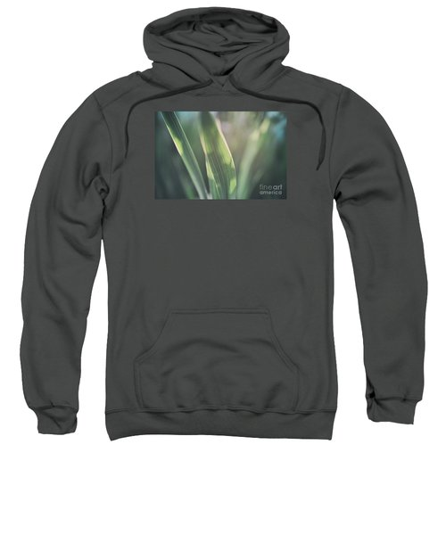 The Allotment Project - Sweetcorn Leaves Sweatshirt
