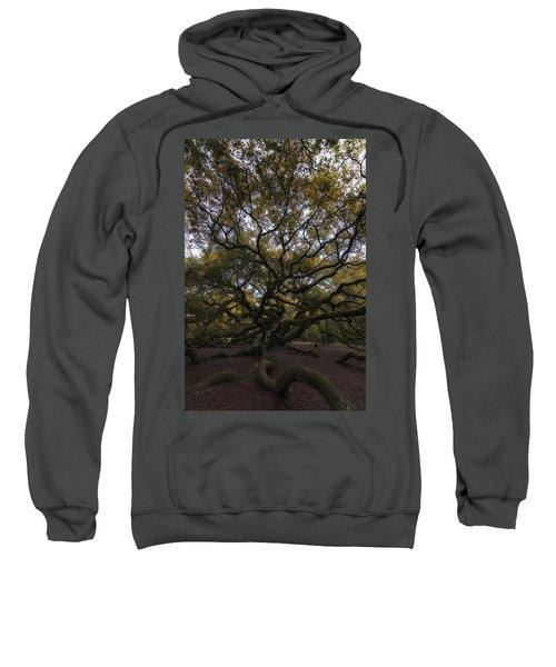 The Angel Oak Tree Sweatshirt