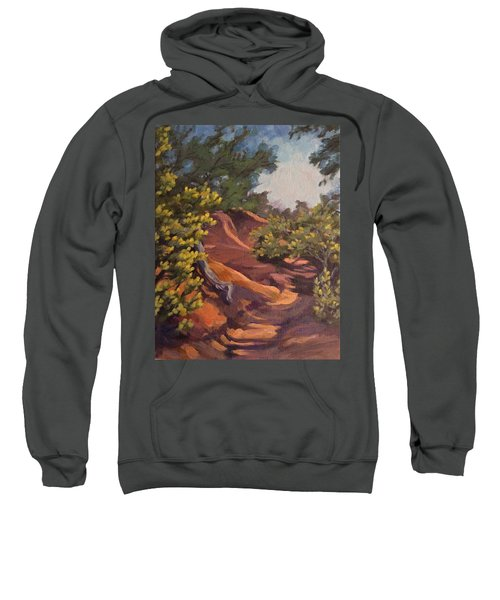 The Arroyo Sweatshirt