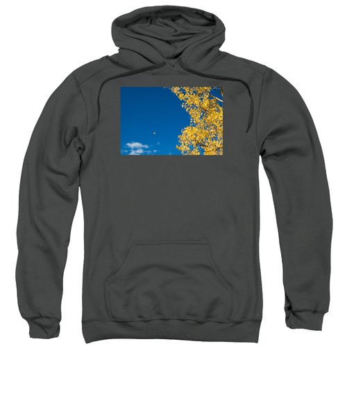 The Aspen Leaf Sweatshirt