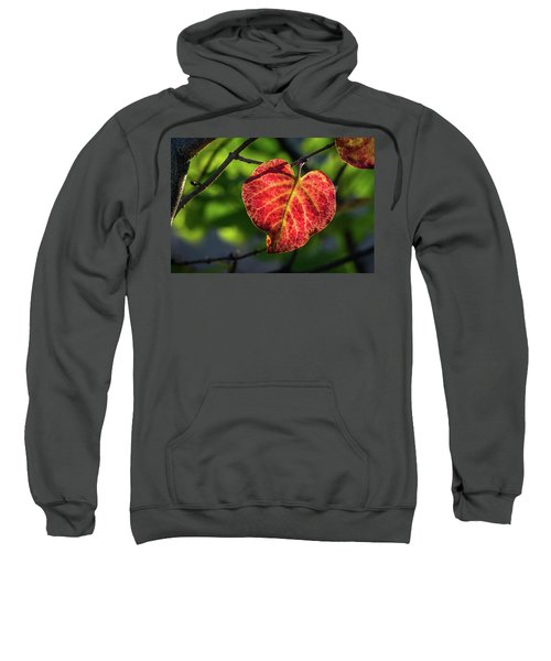 Sweatshirt featuring the photograph The Autumn Heart by Bill Pevlor