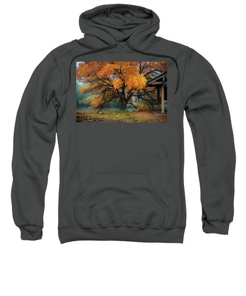 The Autumn Tree Sweatshirt