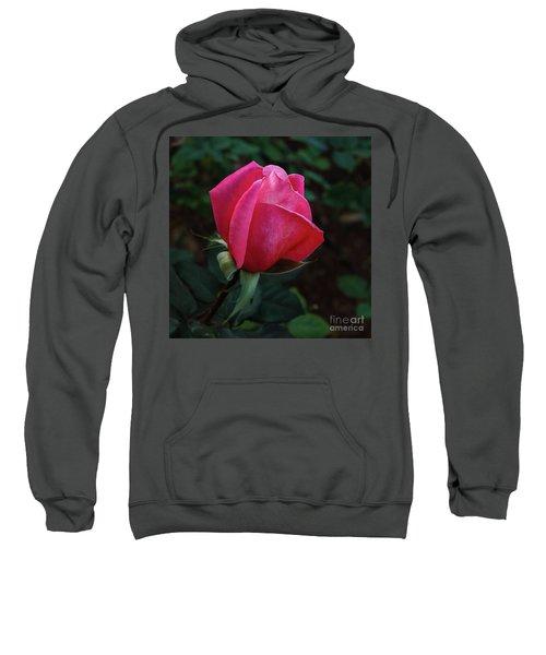 The Beautiful Rose Bud Sweatshirt
