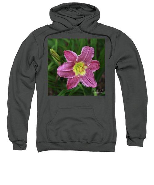 The Beckoning Sweatshirt