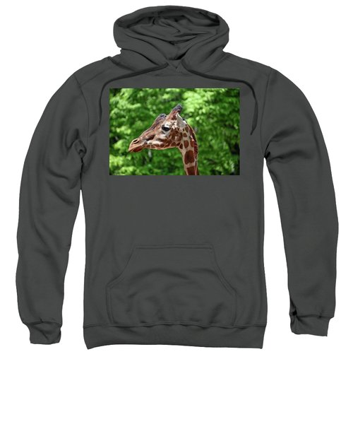 The Big Guy Sweatshirt