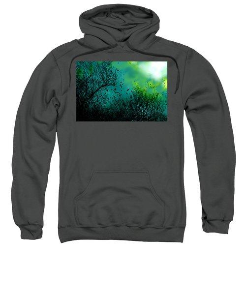 The Birds Of The Air  Sweatshirt
