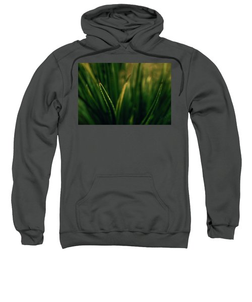 The Blade Sweatshirt