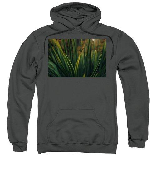 The Blade II Sweatshirt