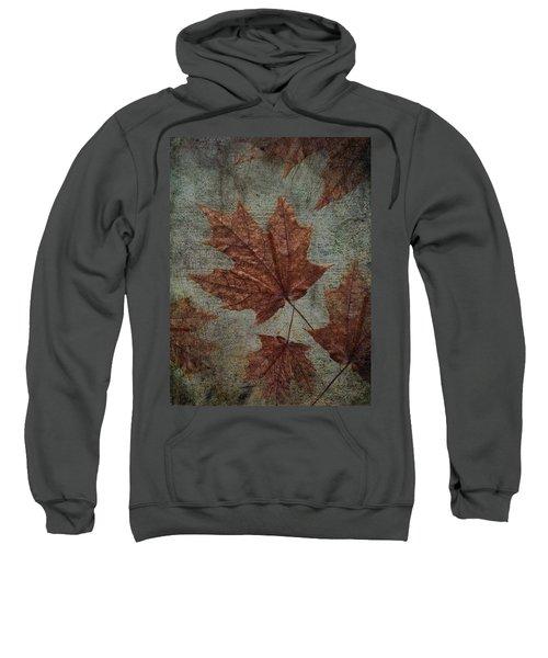 The Bronzing Sweatshirt
