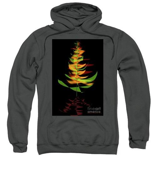 The Burning Bush Sweatshirt