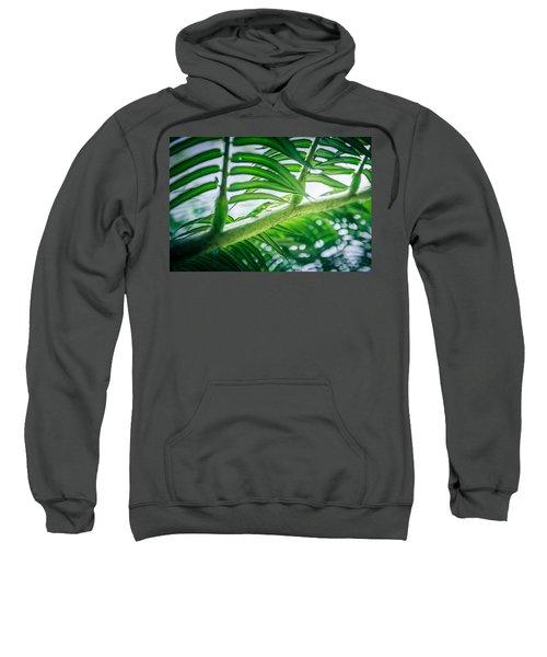 The Camouflaged Sweatshirt