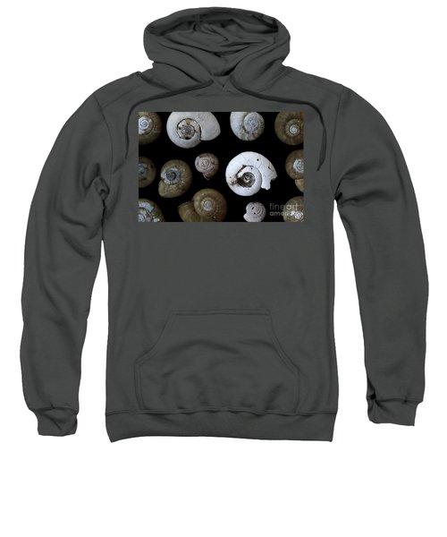 The Collection Sweatshirt