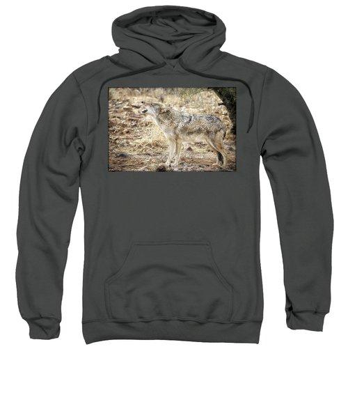 The Coyote Howl Sweatshirt