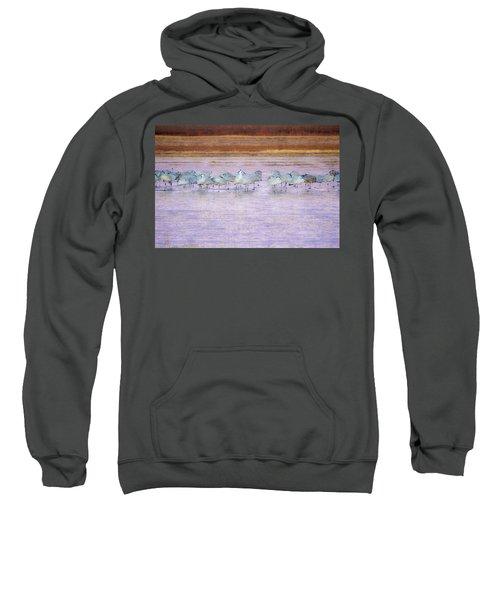 The Cranes Of Bosque Sweatshirt