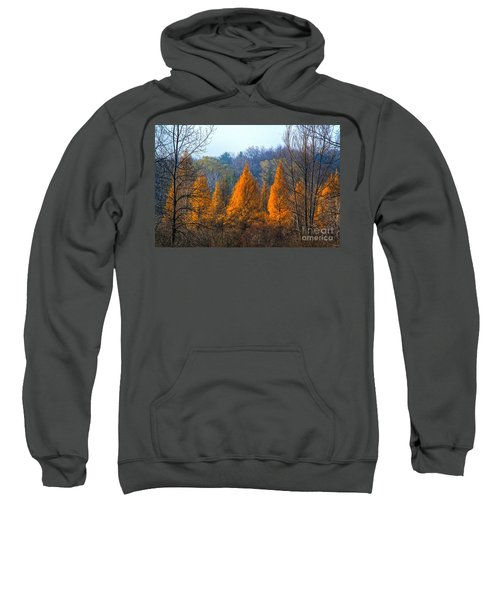 The End Of Another Season Sweatshirt