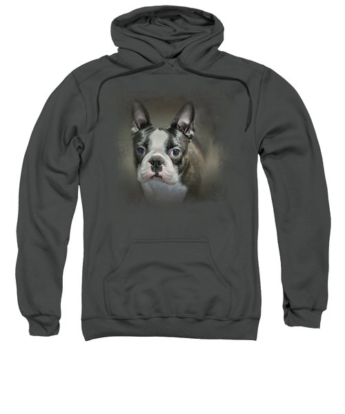 The Face Of The Boston Sweatshirt by Jai Johnson