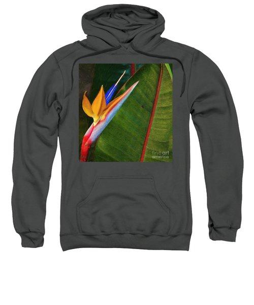 the flower of God Sweatshirt