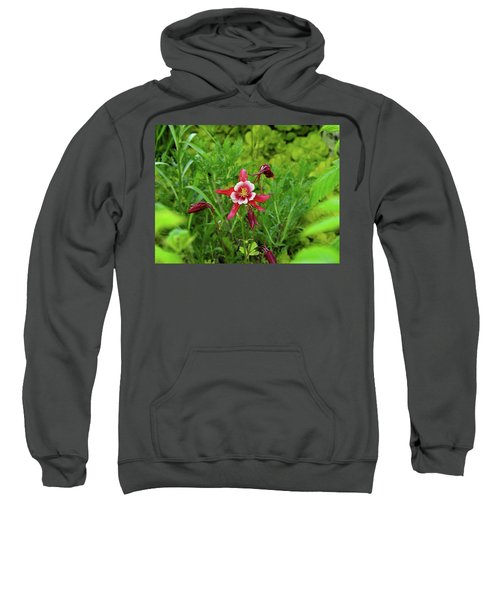 The Flowering Columbine Sweatshirt