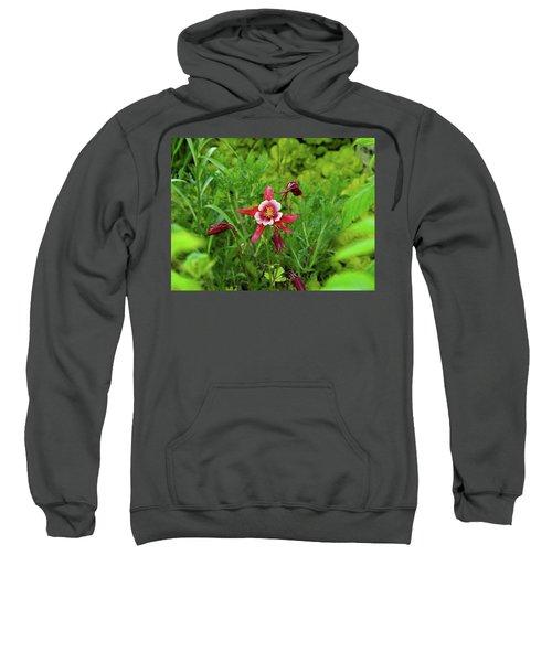 The Flowering Columbine Sweatshirt
