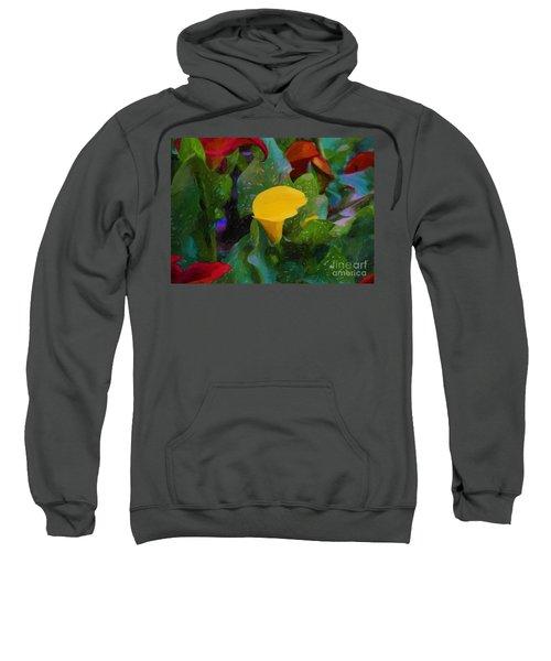 The Flowers In Juarez Park Sweatshirt