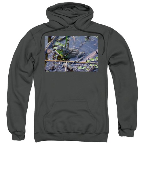 The Frog Remains Sweatshirt