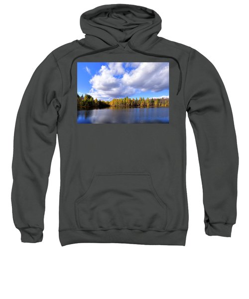 Sweatshirt featuring the photograph The Golden Forest At Woodcraft by David Patterson