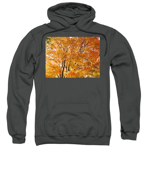 The Golden Takeover Sweatshirt