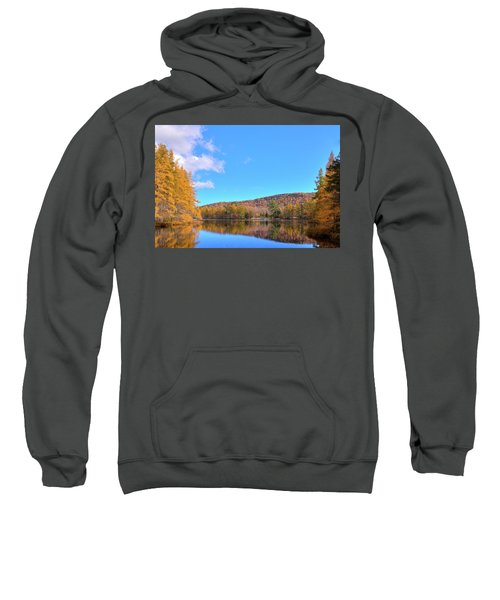 Sweatshirt featuring the photograph The Golden Tamaracks Of Woodcraft Camp by David Patterson