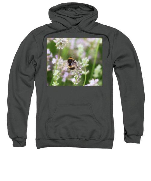 The Great British Bee Sweatshirt