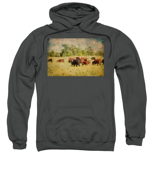 The Herd Sweatshirt