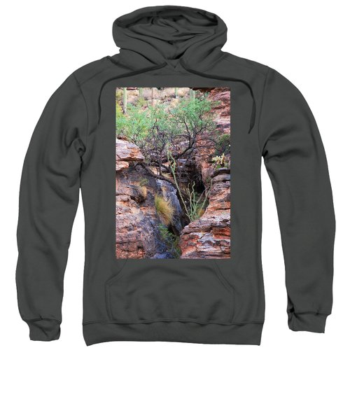 The Hole - Mount Lemmon Sweatshirt