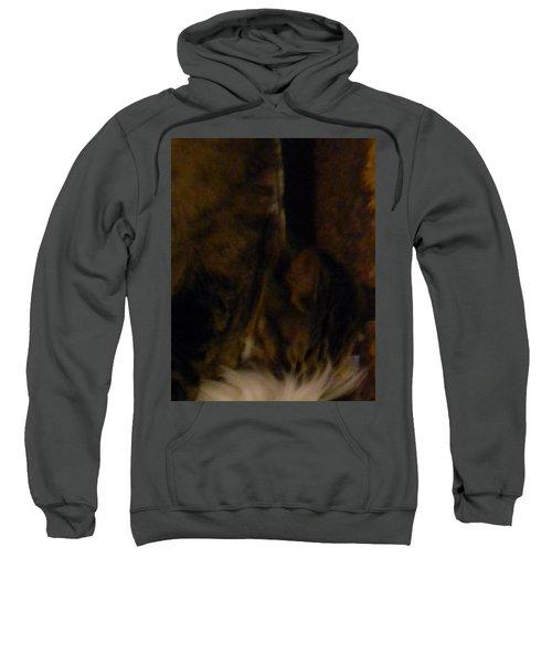 The Inn Creeper And His Pet Sweatshirt