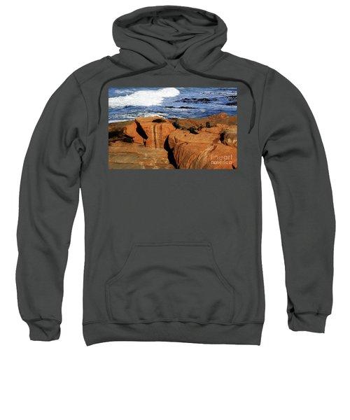 The Lazy Lounging Seals Sweatshirt