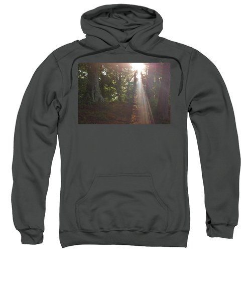The Light Sweatshirt