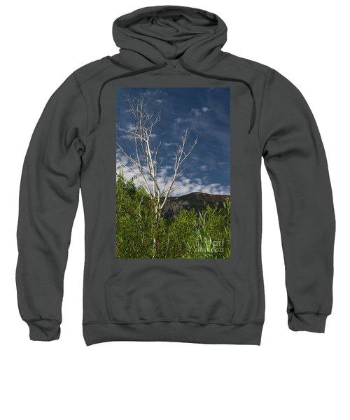 The Lonely Aspen  Sweatshirt