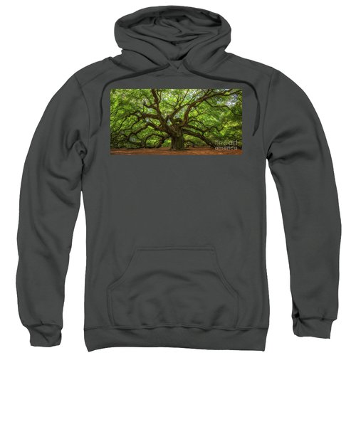 The Magical Angel Oak Tree Panorama  Sweatshirt