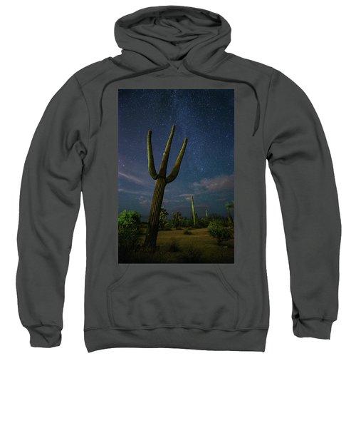 The Magnificent Sweatshirt