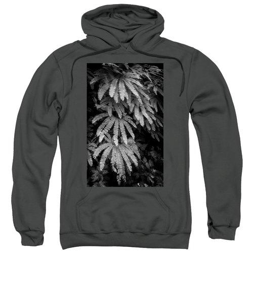 The Maiden's Hair Sweatshirt