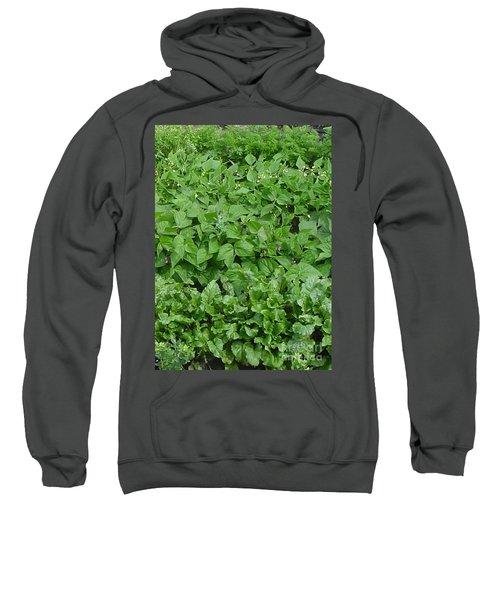 The Market Garden Portrait Sweatshirt